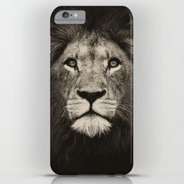 Mr. Lion King iPhone Case
