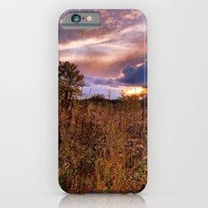 Marsh Sunset Slim Case iPhone 6s