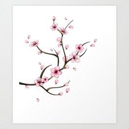 Cherry Blossom branch Kunstdrucke