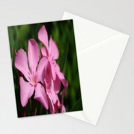 Pink Oleander Blossom Stationery Cards