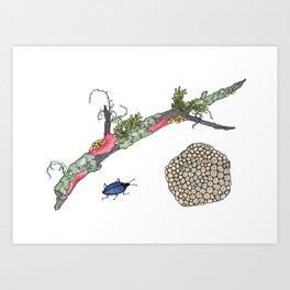 Lichen and Blue Fungus Beetle Art Print