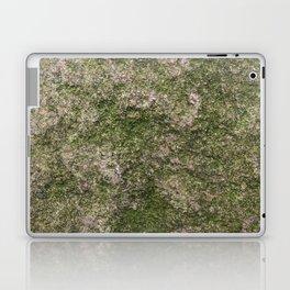 Stone and moss Laptop & iPad Skin