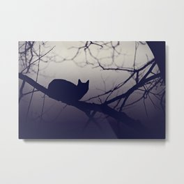 Mistery cat perching on tree in misty night Metal Print