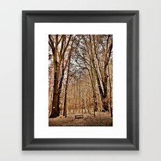Winter's Bench Framed Art Print