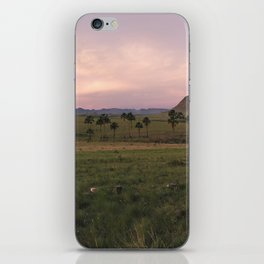 Veadeiros (Panorama) iPhone Skin