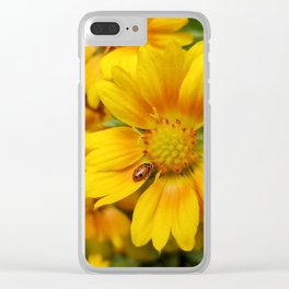 Sunshine, Happiness and Lady bugs Clear iPhone Case