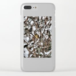 Friendly Freezing Clear iPhone Case