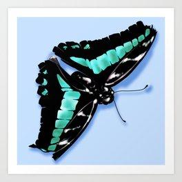 Papillon vert Art Print