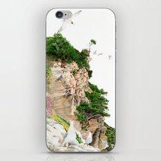 Ligurian Coastline iPhone & iPod Skin