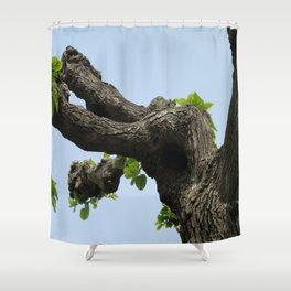 Poplar Tree Shower Curtain