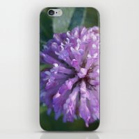 clover iPhone & iPod Skins featuring Clover by Bud M