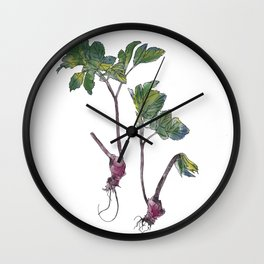 Foraged Ground Elder Wall Clock