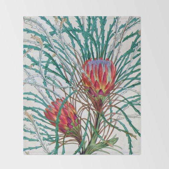 A Protea flower Throw Blanket