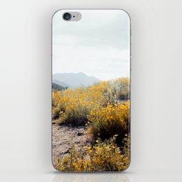vintage style yellow poppy flower field with summer sunlight iPhone Skin