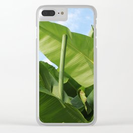 Banana Trees with Blue Skies, V38 Clear iPhone Case