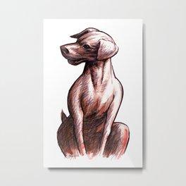 Talking Dogs Metal Print