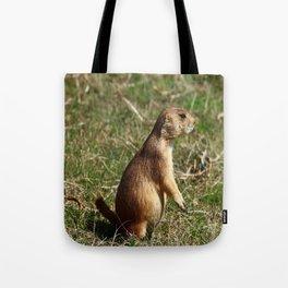 Black-tailed Prairie Dog Pose Tote Bag