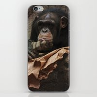 newspaper iPhone & iPod Skins featuring bored chimpanzee after reading newspaper by UtArt