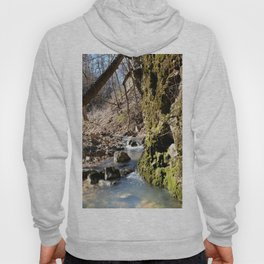 Alone in Secret Hollow with the Caves, Cascades, and Critters, No. 6 of 21 Hoody