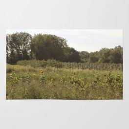 County Line Rug