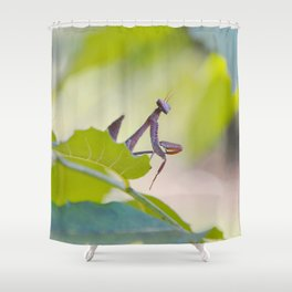 PM #3 Shower Curtain