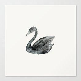 Elegant black white hand painted watercolor swan  Canvas Print