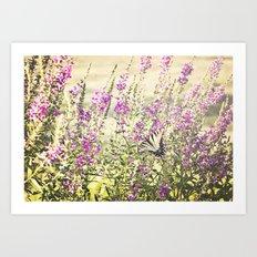 Fields of Butterflies Art Print