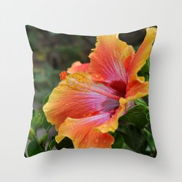 Pink Grapefruit Throw Pillow