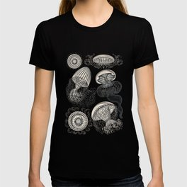 Ernst Haeckel Jellyfish Leptomedusae Silver  T-shirt