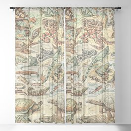 Reptiles II by Adolphe Millot // XL 19th Century Snakes Lizards Alligators Science Textbook Artwork Sheer Curtain