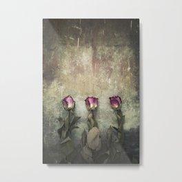 Three dried Roses Metal Print