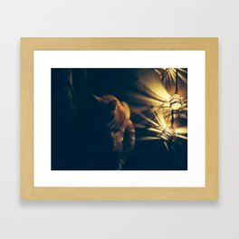 Evening Chat  Framed Art Print