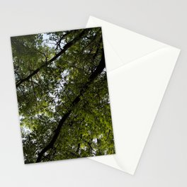 Lush Leaves Stationery Cards