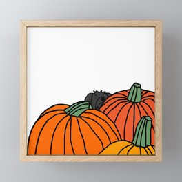 Fergus the Dog waiting for the black cats in the Pumpkin Patch for Halloween Framed Mini Art Print