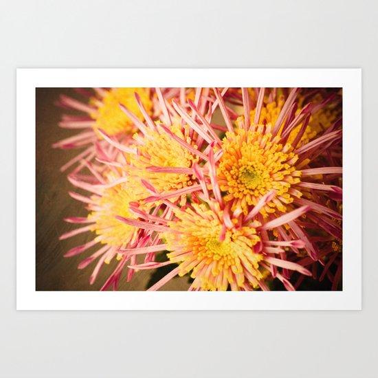 Autumn Fireworks Art Print