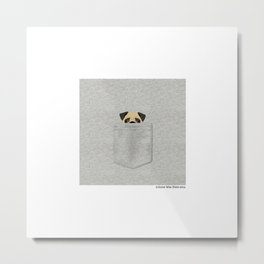 Pocket Pug Metal Print