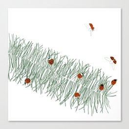 Feathergrass Canvas Print