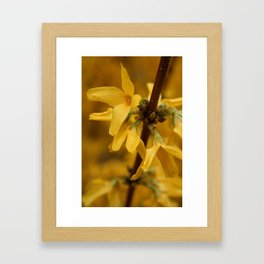 Bloomin' Yellow Framed Art Print