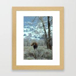 Long afternoon Framed Art Print