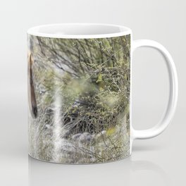 Salt River Wild Foal Coffee Mug