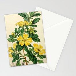 Edwards' botanical register Stationery Cards