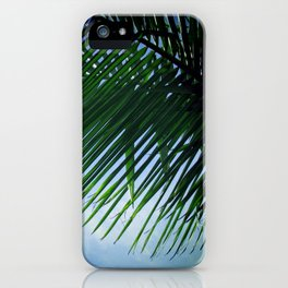 Sunlit Palm Leaves iPhone Case