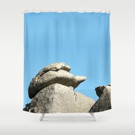 Stonework Shower Curtain