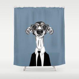 Greyhound in suit Shower Curtain