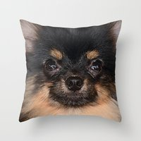 pomeranian Throw Pillows featuring Pomeranian by Pancho the Macho