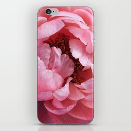peony bloom iPhone Skin
