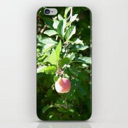 Apple on a Tree iPhone Skin