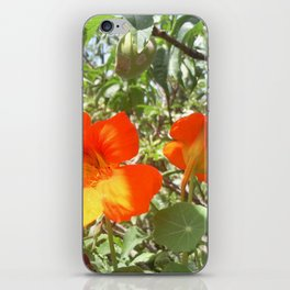 Loving Flowers iPhone Skin