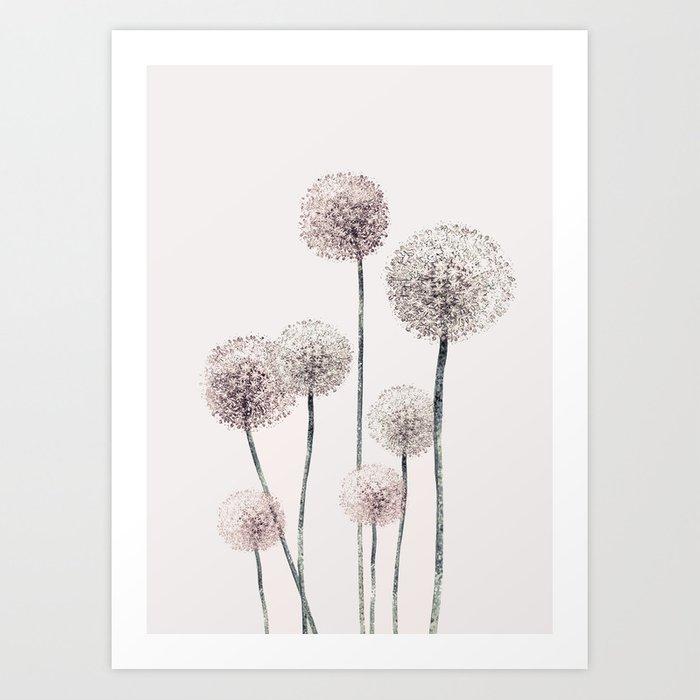 Discover the motif DANDELIONS by Andreas12 as a print at TOPPOSTER