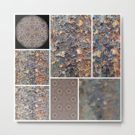 Lacebark Elm Tree Graphic Art #3495 Metal Print